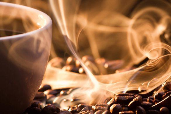 degustation-de-cafe